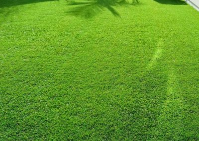 artificial-grass-1