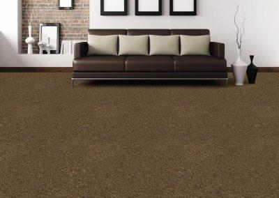 loungebrowncarpet